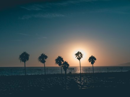 Venice Beach Sunset patrick-tomasso-396483-unsplash