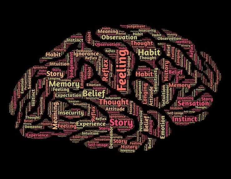 mind-544404_1920