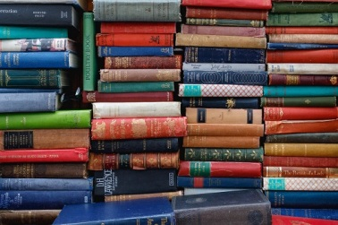Books 2 ed-robertson-1373938-unsplash
